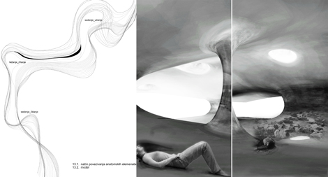1112M4_Katarina_Mercep_bioAnatomy_07_model