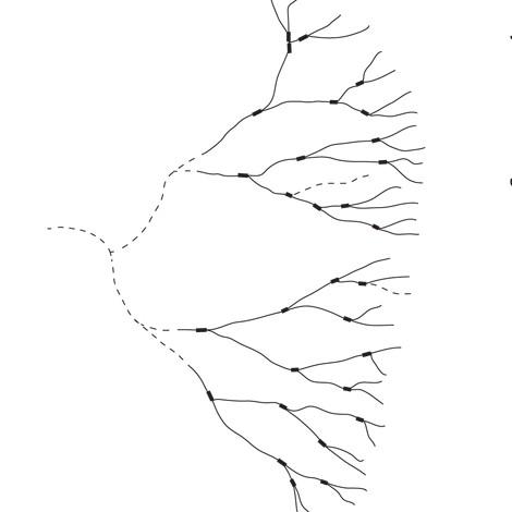 ispit - vektor